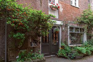 Ruelle de Haarlems I Nature en ville I Noord-Holland I Photographie ancienne