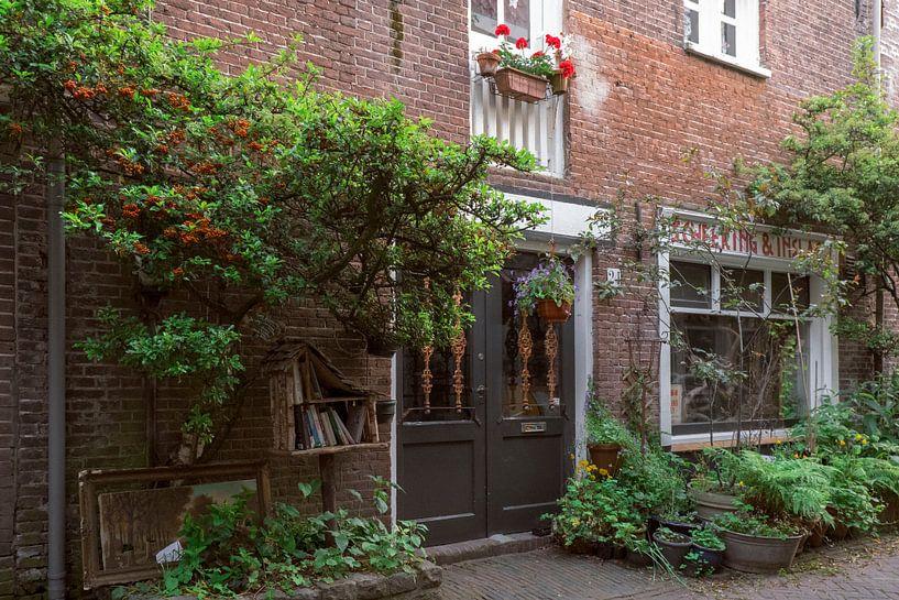 Ruelle de Haarlems I Nature en ville I Noord-Holland I Photographie ancienne sur Floris Trapman