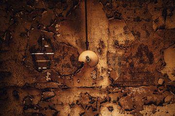Die braune Decke von Joris Pannemans - Loris Photography