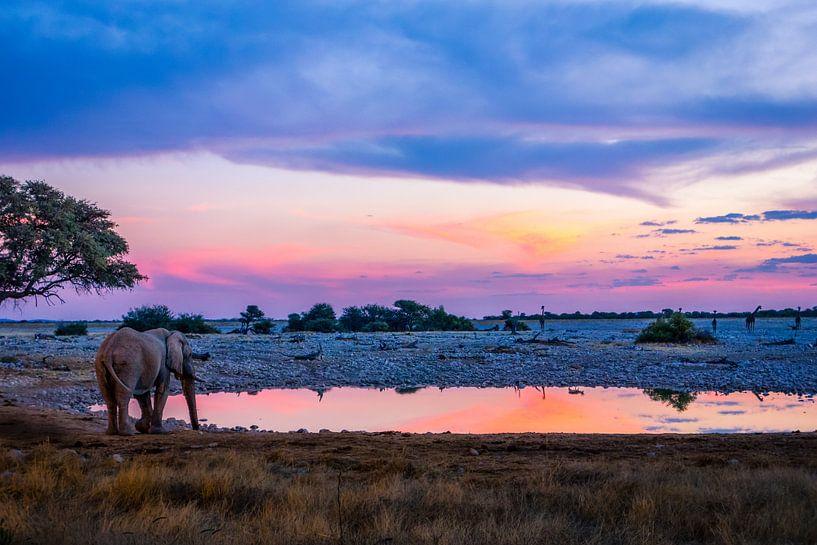 Elephant at waterhole van Leendert van Bergeijk