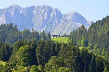 Berghuisje in Oostenrijk/ Mountain house in Austria/ Berghaus in Österreich van Joyce Derksen