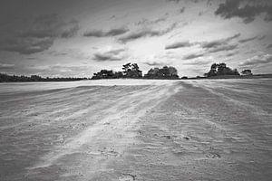 Zandverstuiving bij Kootwijkerzand
