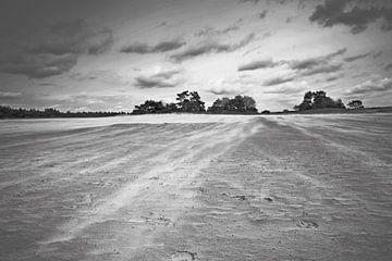 Zandverstuiving bij Kootwijkerzand von Incanto Images