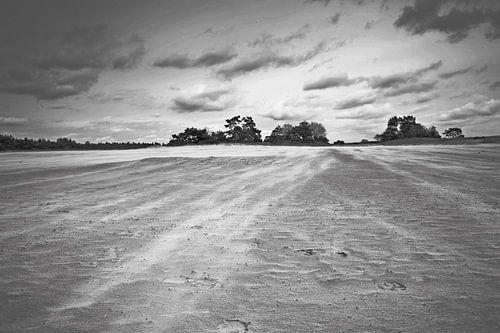 Zandverstuiving bij Kootwijkerzand van