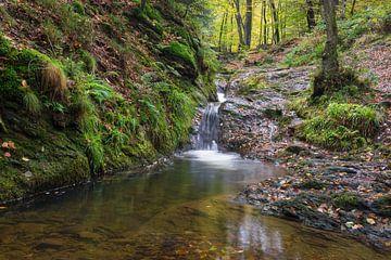 watervallen van de Ninglinspo van Francois Debets