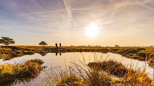 De Veluwe, de Hollandse Savanne met ondergaande zon van