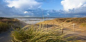strand, duinen en wind van Arjan van Duijvenboden