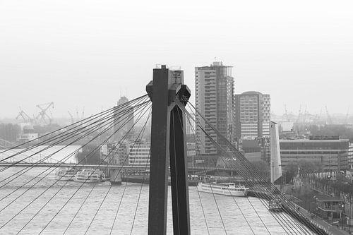 Het kijkje door de Willemsbrug in Rotterdam van MS Fotografie
