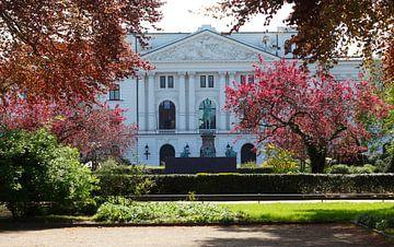 Altonaer Rathaus von 1898, Nordseite, Sitz Bezirksamt Hamburg-Altona, Bezirksversammlung,  Park vor  von Torsten Krüger