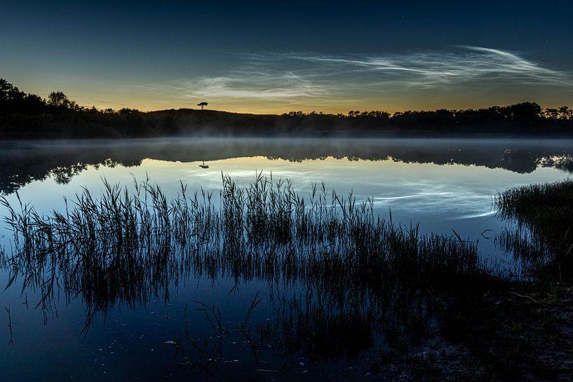 Het boompje met lichtende nachtwolken van Marjolein van Roosmalen