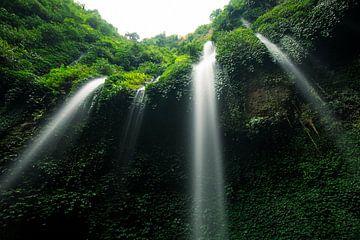 Madakaripura Waterval - Oost-Java, Indonesië sur Martijn Smeets