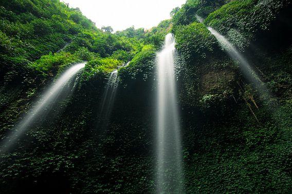 Madakaripura Waterval - Oost-Java, Indonesië van Martijn Smeets