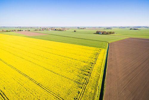 Koolzaad in Groningen van Boven van dron inger