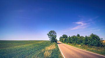 De weg naar nergens - weg tussen veld en weide in het midden van de regio Nier van Jakob Baranowski - Off World Jack