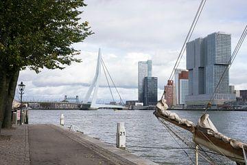 View of the Wilhelminapier, Rotterdam 2018 sur Rick van der Poorten