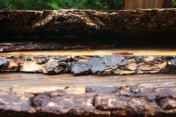 afgebrokkeld hout van Dewi Hoffs