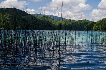 Plitvicemeer Kroatie von Jacqueline Janssen