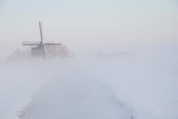 Watermolen De Havik in Grootschermer