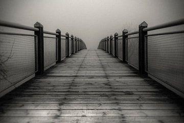 Die Brücke ins Nichts van Carina Buchspies