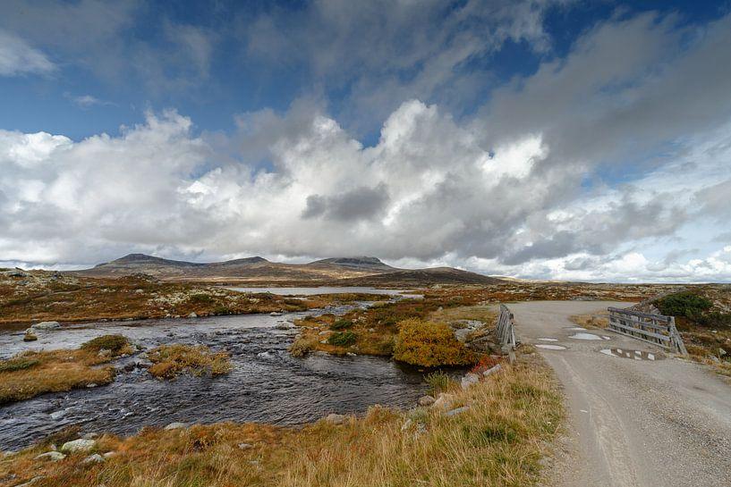 Landschap van Noorwegen tijdens de herfst. van Menno Schaefer