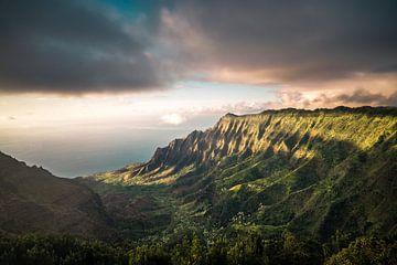 Na Pali Kust van road to aloha