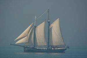 Sail ship near Vlissingen van Teus Reijmerink