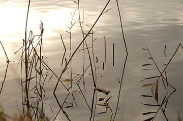 abstractie in het water van Ruth de Jong