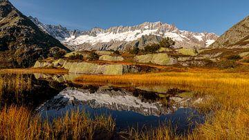 Auf dem Weg zur Bergseehütte, Göschenertal, Kanton Uri von Pascal Sigrist - Landscape Photography