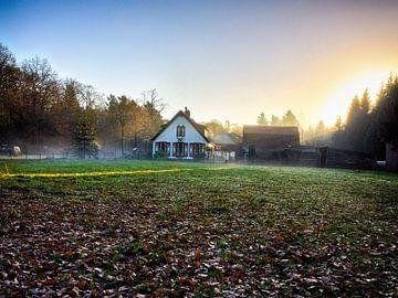Gouden zonsondergang in een mistige bos (Nederland). van