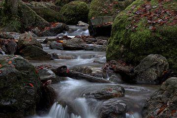 Foto van een Ardennen rivier met watervallen van Cor Brugman