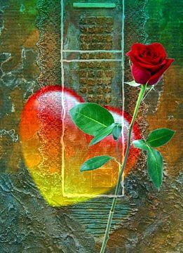 Een roos voor de liefde van Gertrud Scheffler