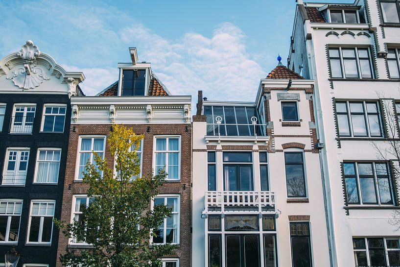 Amsterdam Huizen van Patrycja Polechonska