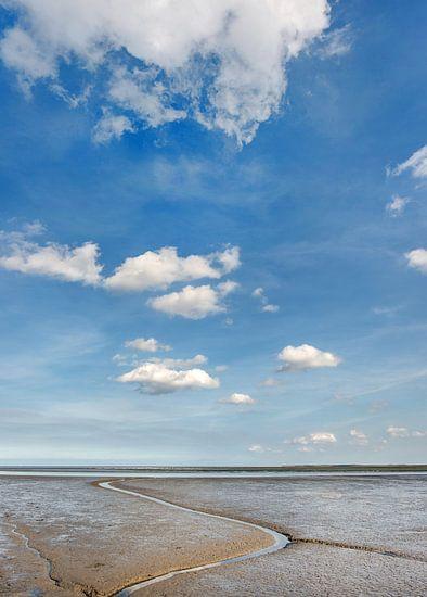 De Waddenzee bij eb op een mooie zomerdag van Harrie Muis