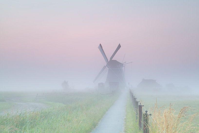 Farmlad in the fog van Olha Rohulya