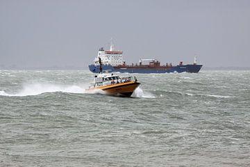 Loodsboot op de Westerschelde bij Vlissingen van MSP Canvas