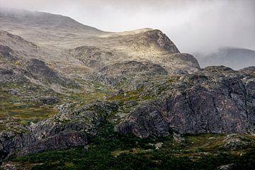 Raue Berge von Pieter Gordijn