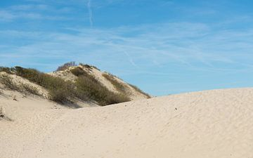 Zandduinen bij Kijkduin van
