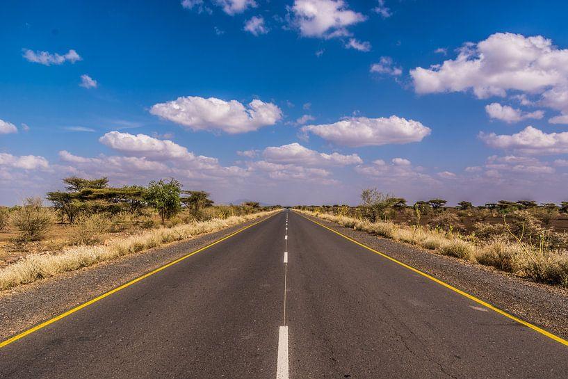 never ending road van Adri Vollenhouw