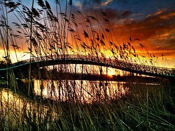 zonsondergang in Maximapark von fotosvan leidscherijn