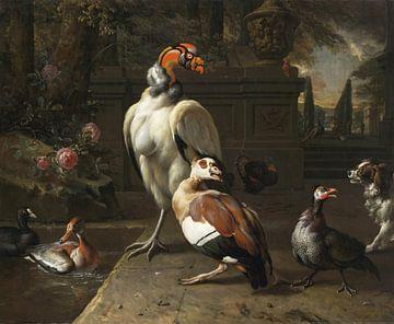 Oiseaux exotiques dans un parc, Jan Weenix