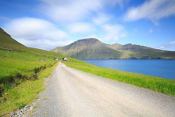 Mula auf den Färöer Inseln. von Erik Vergunst
