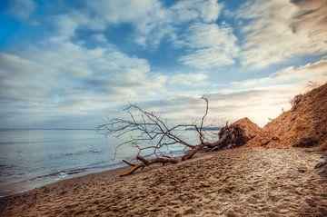 Beach Sellin sur Steffen Gierok