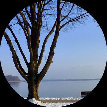 Winter am Chiemsee I  van Ilona Picha-Höberth