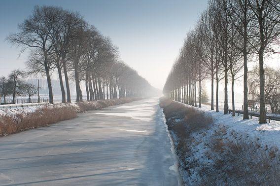 Meetjesland I van Toon Maes