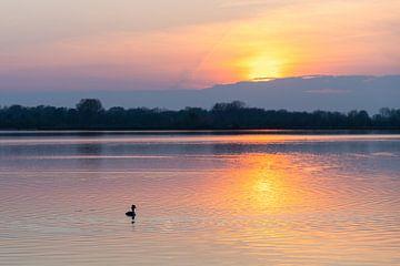 Zonsondergang op meer met watervogel van Foto Danielle