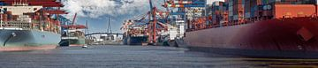 Panorama d'un terminal dans le port de Hambourg sur Jonas Weinitschke
