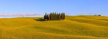 Panorama Cirkel van Cipressen in Torrenieri. Toscane, Italië van Henk Meijer Photography