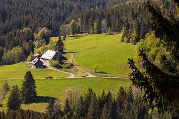 Bauernhaus im Hochschwarzwald von Werner Dieterich