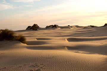 Terschelling eiland strand zon zee duinen van Marijke Scheers