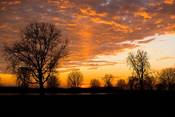 Sunset at the Maas 2
